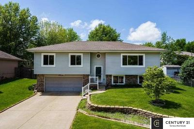 Bellevue Single Family Home New: 9710 S 23 Street
