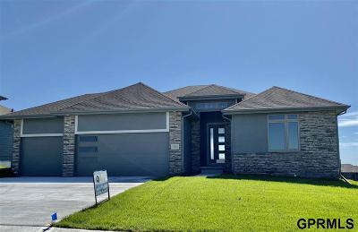 Omaha Single Family Home For Sale: 12765 Reynolds Street