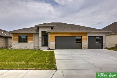 Omaha Single Family Home For Sale: 10913 S 175th Avenue