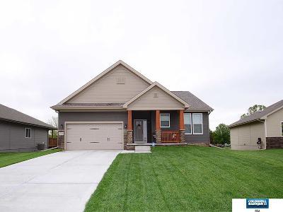 Papillion Single Family Home For Sale: 2155 Skyhawk Avenue