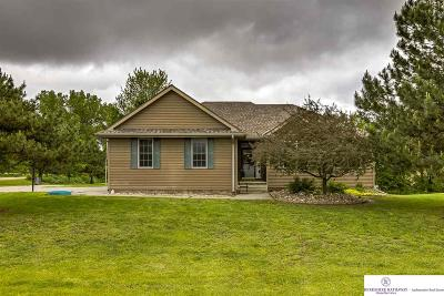 Single Family Home For Sale: 15490 Reagan Drive