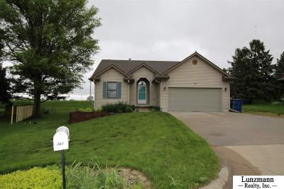 Single Family Home For Sale: 360 Swanson Drive