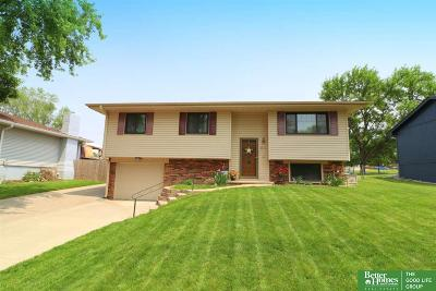 Single Family Home For Sale: 7711 Greenleaf Drive