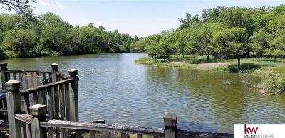 Fremont Single Family Home For Sale: 870 Ridgeland Avenue