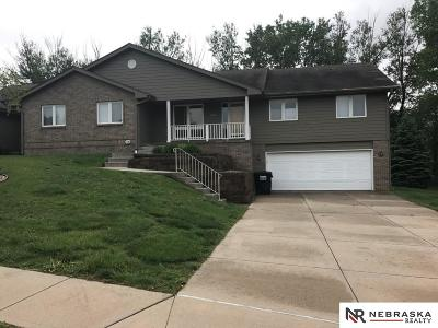 Papillion Single Family Home For Sale: 1519 Papillion Drive
