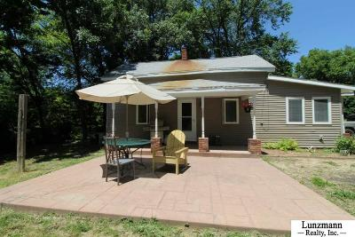 Brownville Single Family Home For Sale: 310 N 6th Street