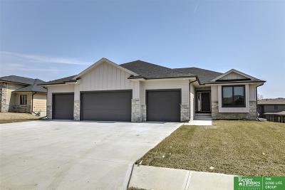Omaha Single Family Home For Sale: 10817 S 175 Avenue