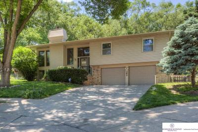 Bellevue Single Family Home For Sale: 302 Rexroad Place