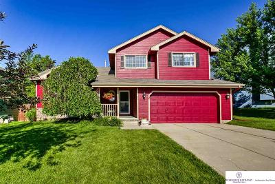 Bellevue Single Family Home For Sale: 14106 S 21 Street
