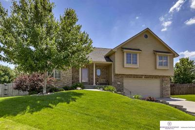 Papillion Single Family Home For Sale: 2217 Kara Circle