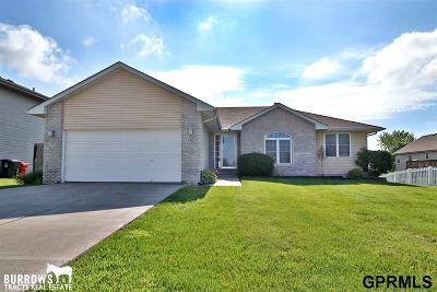 Gretna Single Family Home New: 12605 S 218 Street