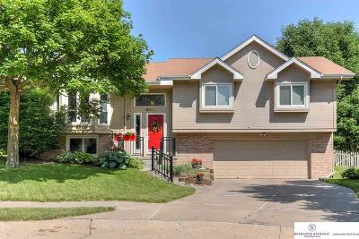 Omaha Single Family Home New: 15822 Decatur Street