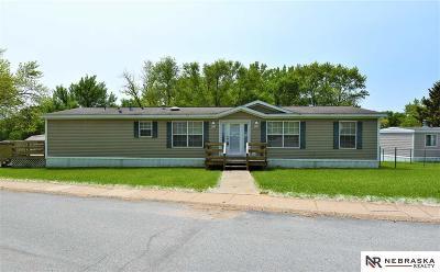 Omaha Single Family Home New: 11029 Iowa Plaza #315