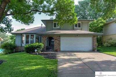 Omaha Single Family Home New: 11036 Sahler Street