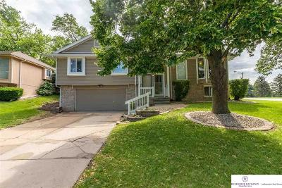 Bellevue Single Family Home For Sale: 103 Gregg Place