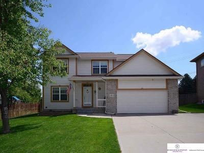 Omaha Single Family Home For Sale: 4411 S 168th Avenue