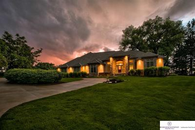 Omaha Single Family Home For Sale: 210 Skyline Drive