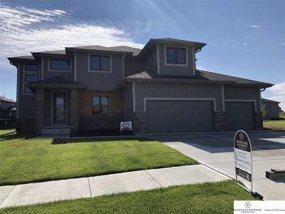 Elkhorn Single Family Home For Sale: 3903 S 208 Street