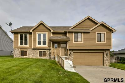 Papillion Single Family Home For Sale: 608 Ruby Road