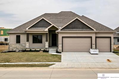 Papillion Single Family Home New: 10205 S 106 Street