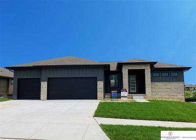 Single Family Home New: 21006 Cedar Street