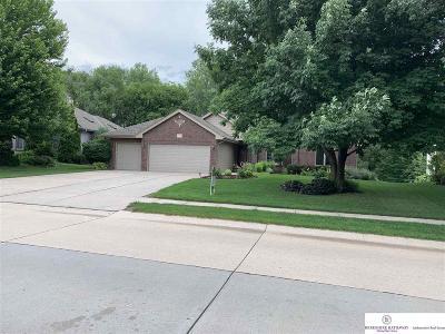 Omaha Single Family Home New: 1829 S 179 Street
