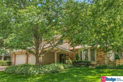 Single Family Home New: 12625 Burt Street