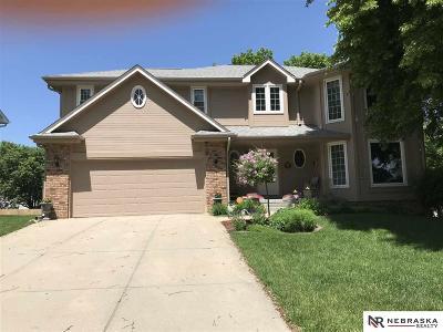 Papillion Single Family Home For Sale: 906 Michael Drive