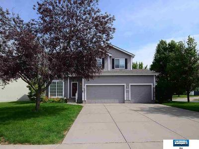 Papillion Single Family Home For Sale: 1002 Valleyview Drive