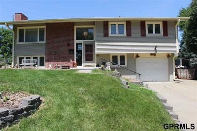 Single Family Home For Sale: 8710 M Circle