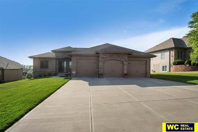 Omaha Single Family Home For Sale: 3904 N 194th Street