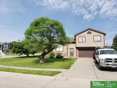 Papillion Single Family Home For Sale: 1005 Mesa Circle
