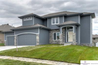 Gretna Single Family Home For Sale: 8109 S 193rd Street