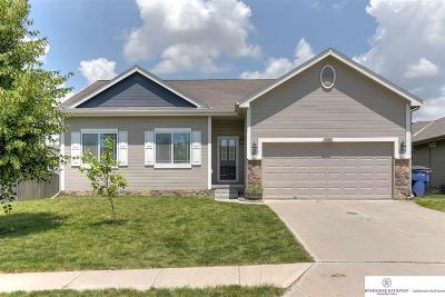 Papillion Single Family Home For Sale: 4606 Waterford Avenue