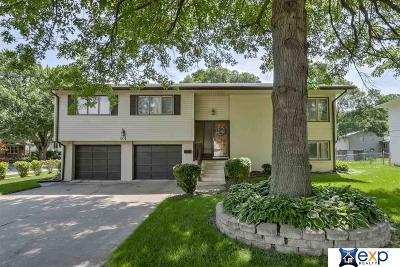 Papillion Single Family Home For Sale: 801 S Grandview Avenue