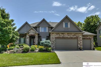 Omaha Single Family Home For Sale: 19273 Williams Street