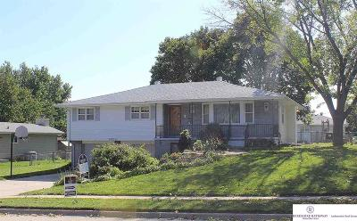 Omaha Single Family Home For Sale: 9805 Hartman Avenue