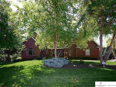 Single Family Home For Sale: 1420 S 185 Circle