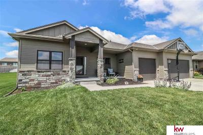 Omaha Single Family Home For Sale: 4608 S 198 Street
