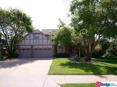 Omaha Single Family Home For Sale: 3451 S 161 Street