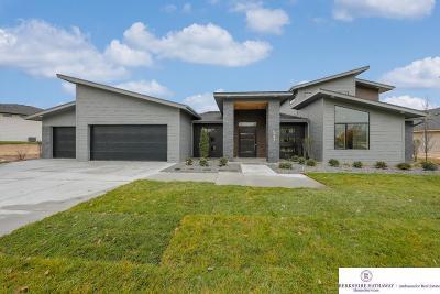 Ashland Single Family Home For Sale: 547 Bald Eagle Boulevard
