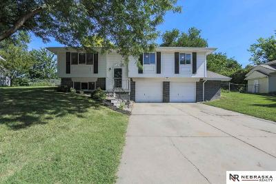 Single Family Home For Sale: 18930 Benton Boulevard