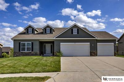 Single Family Home For Sale: 17101 Chandler Street