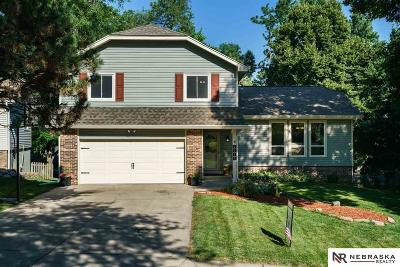Omaha Single Family Home New: 2515 S 152 Avenue Circle