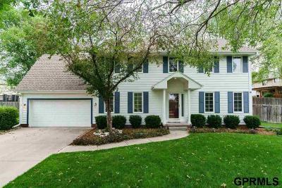Omaha Single Family Home New: 5009 S 169 Avenue Circle