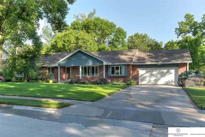 Omaha Single Family Home New: 6036 Bridle Path