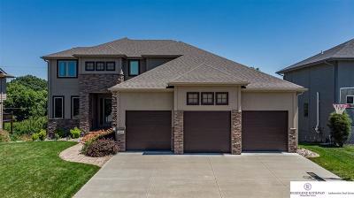 Papillion Single Family Home For Sale: 12111 S 48 Street