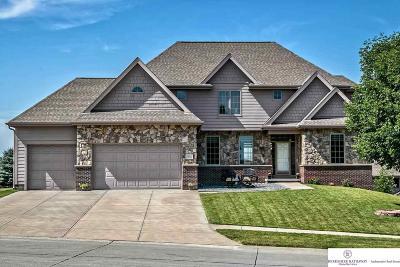 Omaha Single Family Home For Sale: 19614 Franklin Street