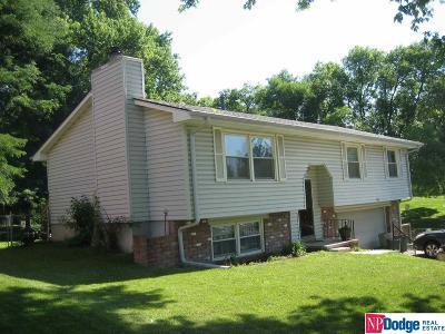 Omaha Single Family Home New: 11306 Fowler Avenue