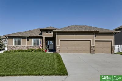 Papillion Single Family Home For Sale: 12569 S 82nd Street